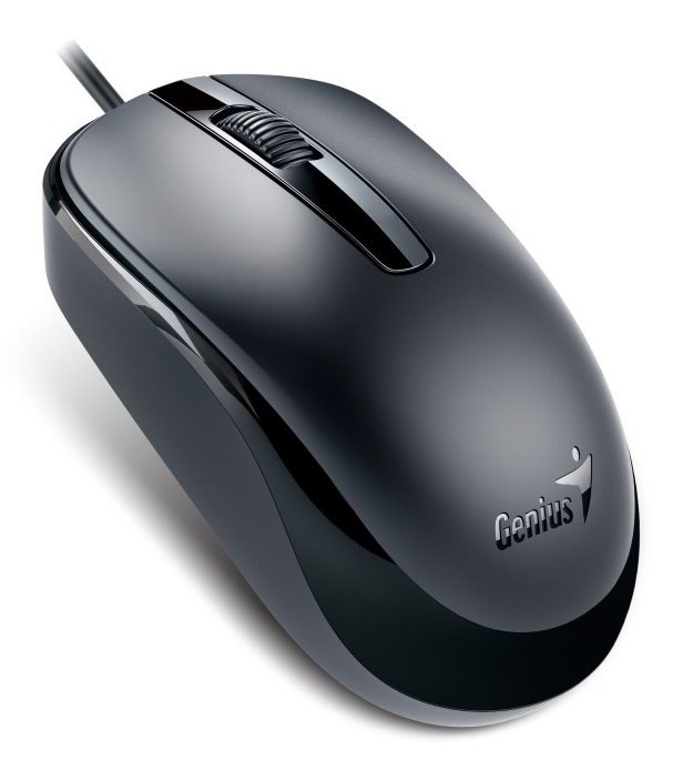 Mouse Genius DX-120 (USB)